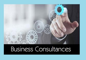 Business Consultancies